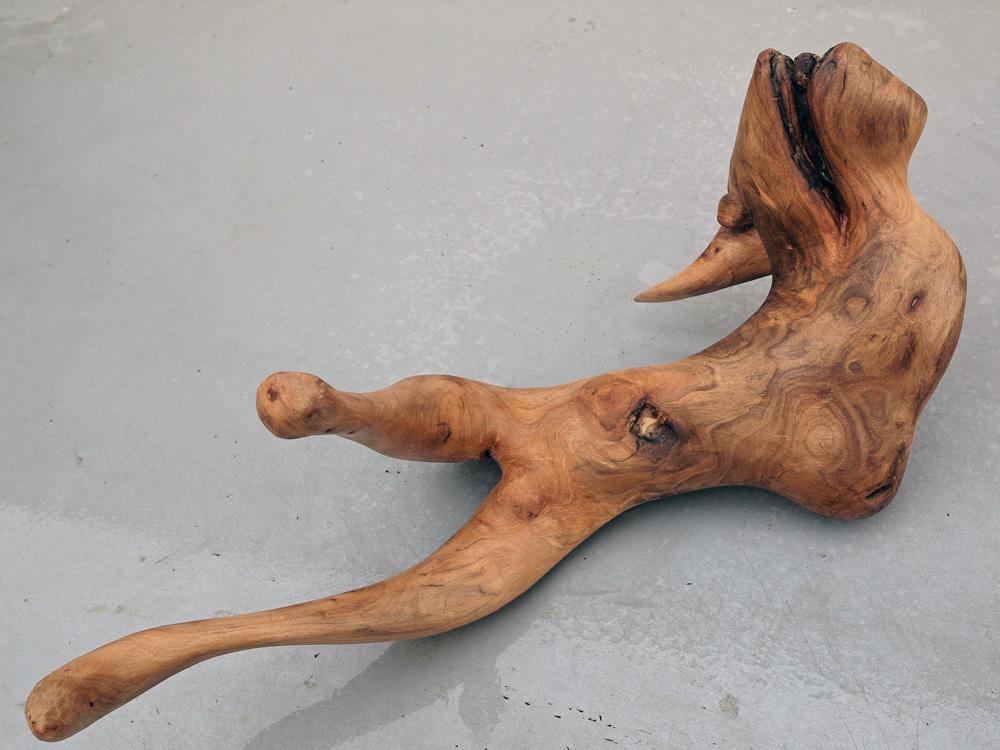 dierlijke vorm